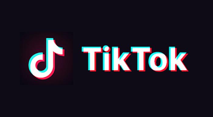 TikTok アプリ 動画検索 方法