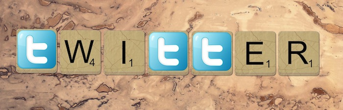 twitter データ利用 設定 方法